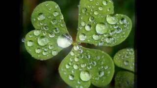 Chris Rea - I love the rain.wmv
