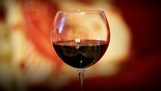 Do Wine Kits Have an Expiration Date | How Long Do Wine Kits Last (Shelf Life) » HomeBrewAdvice.com