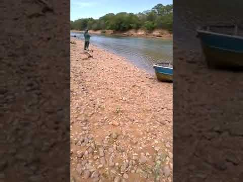 Pesca de carimba Rio Paracatu Brasilândia de Minas