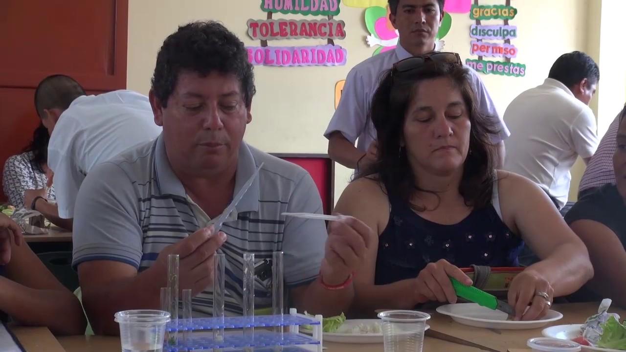 UGEL Moyobamba realiza acciones pedagógicas de capacitación a Docentes y Directores