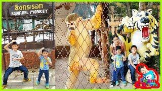 น้องบีม | ดูเสือตัวใหญ่ ลิงน่ารัก เที่ยวบึงฉวากสุพรรณบุรี Zoo