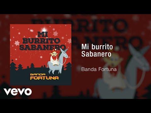 Banda Fortuna Mi Burrito Sabanero
