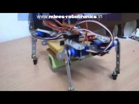 Four legged walking robot (Quadruped)