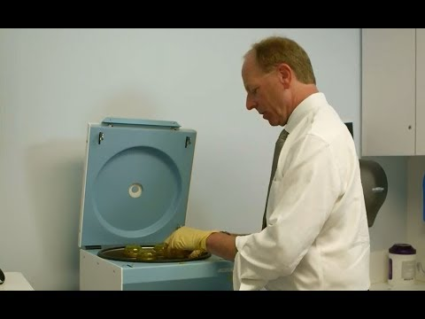 Image - HSS Minute: Platelet Rich Plasma (PRP) Treatment