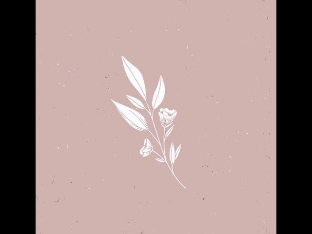 Щетка-кактус для сухого массажа