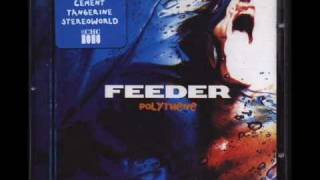 Feeder - Forgive