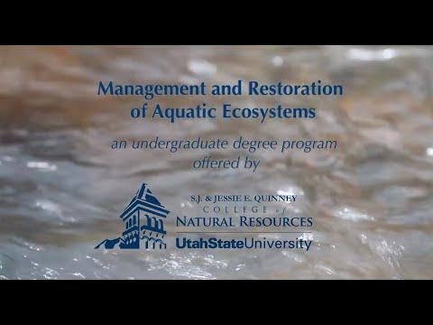 Management & Restoration of Aquatic Systems degree at Utah State University