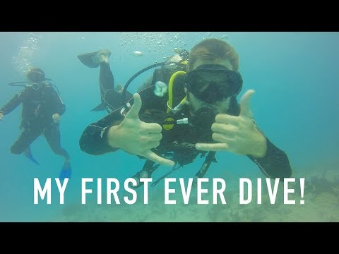 FIRST TIME DIVING IN MEXICO! (PLAYA DEL CARMEN)