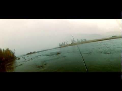 Stagni nella regione di Voronezh per risposte da pesca