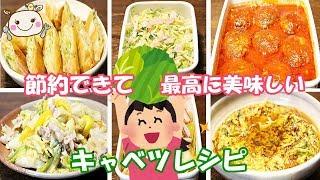 【節約】にもなる美味しいキャベツレシピ【6品紹介】