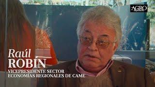 Raúl Robín - Vicepresidente Sector Economías Regionales de Came