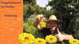 Ringelblumenöl herstellen | schonender Kaltauszug für Ringelblumensalbe