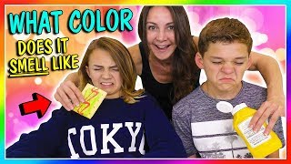 WHAT COLOR DOES IT SMELL LIKE?!?! | We Are The Davises