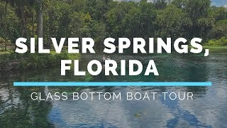 Silver Springs Glass Bottom Boat Tour