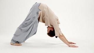 Пять тибетцев или Око возрождения - СУПЕР омолаживающая гимнастика   -  econet.ru