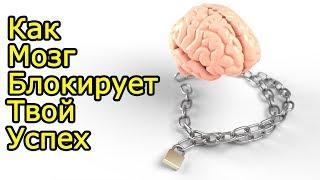 Именно этим МОЗГ загоняет тебя в никчемную жизнь – Ловушки мозга как работает мозг и как его развить