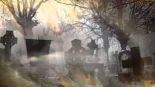 Video PŘEVOZNÍK