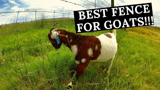 Best Goat Fence