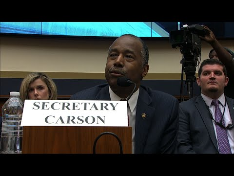 Two Democratic lawmakers stumped Housing and Urban Development Secretary Ben Carson in a hearing on Tuesday. They asked him about acronyms that relate to the federal government and housing. (May 22)