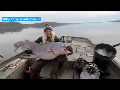 Die 40-Kilo-Fisch