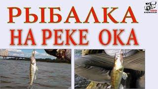 Рыбалка в московской области на берегу реки