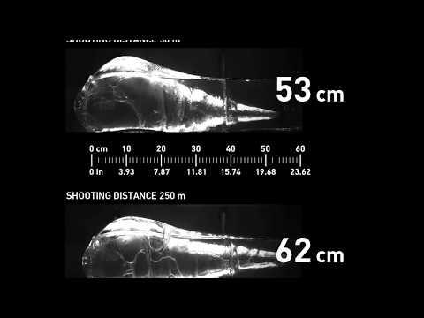 Sako Gamehead calibre .30-06 Springfield