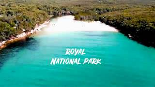 Royal National Park, Sydney