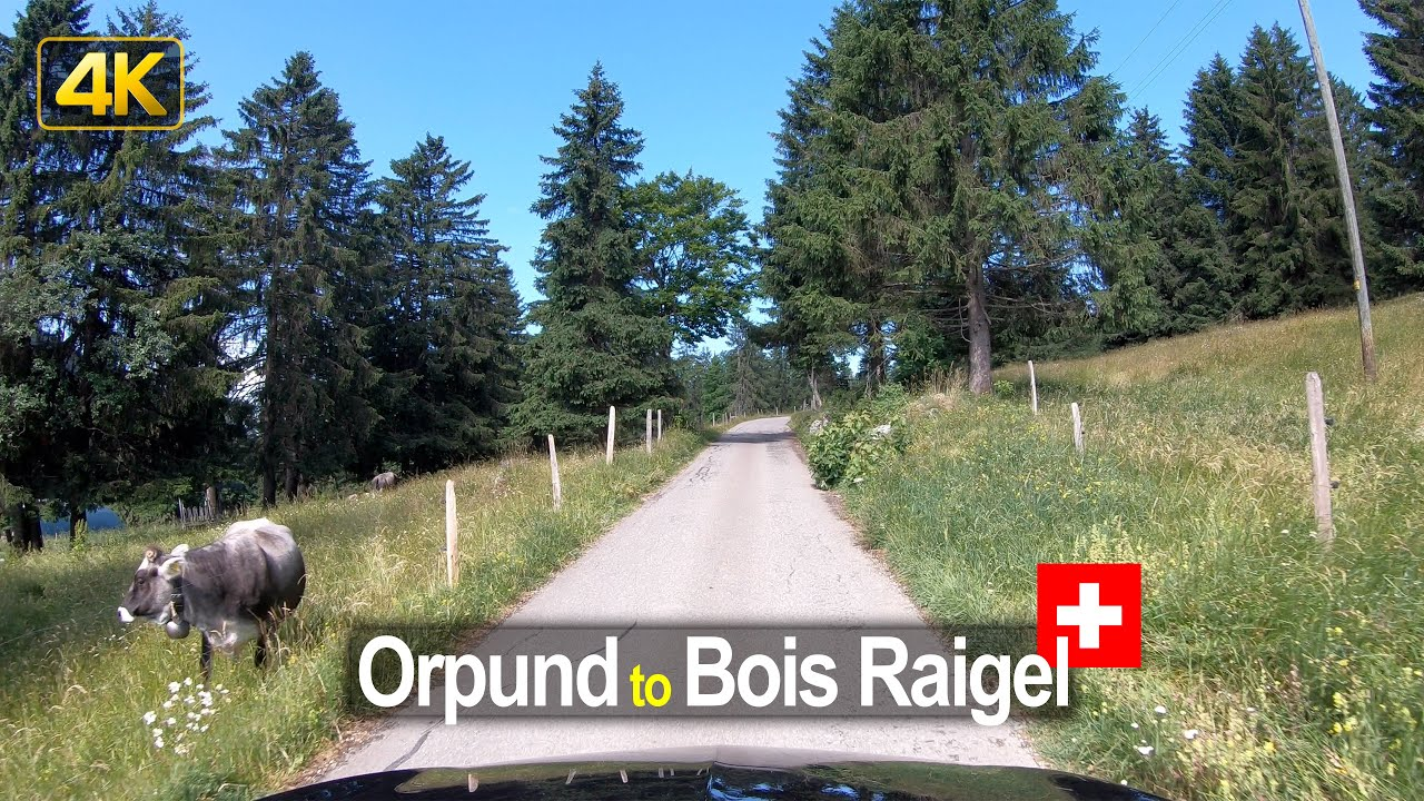 Driving from Orpund to Bois Raigel – Scenic Drive Switzerland!
