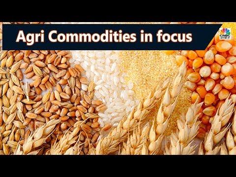 जानें  Agri Commodities में आगे कहां है बेहतर रिटर्न   Commodity Outlook   CNBC Awaaz
