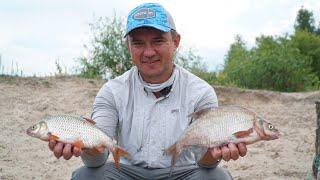 Рыбалка на Диком Острове! Раздача белой рыбы! Фидерный монтаж инлайн + Конкурс