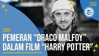 Profil Tom Felton - Aktor Film dan Penyanyi