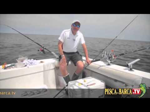 La pesca in video girante kolebalka
