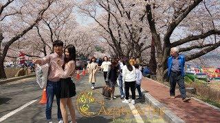 Azjatycki Trip - Korea Południowa