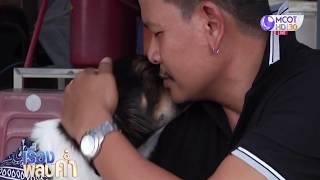 'น้องบิ๊ก' สุนัขแสนรู้! งับปากโต้ตอบราวกับรู้ภาษาคน