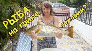 Как приготовить рыбу на мангале Рыба на гриле  Простой рецепт
