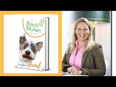 🐶Die Bachblüten Therapie für den Hund - 📚Buch Klaudia Skodnik