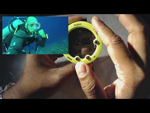 Suunto Novo Honest Review – Dive Tested by a Novice