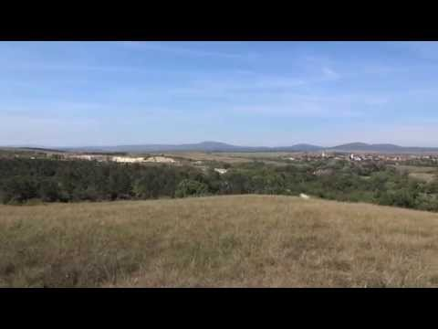 Video Bubnovskaya con lombalgia acuta