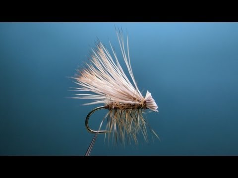 "[HD] High Floating Elk Hair Caddis.""FlyTier's Eyes. No.15"""