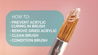Keeping Your Acrylic Brush In Top Shape - Suzies Pro Tips