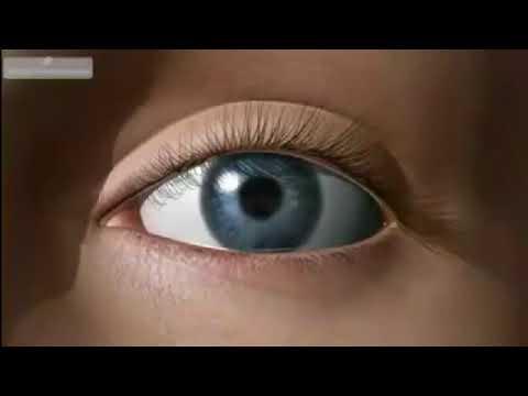 Упражнения для восстановления зрения по норбекову отзывы