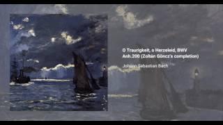 O Traurigkeit, o Herzeleid, BWV Anh. 200
