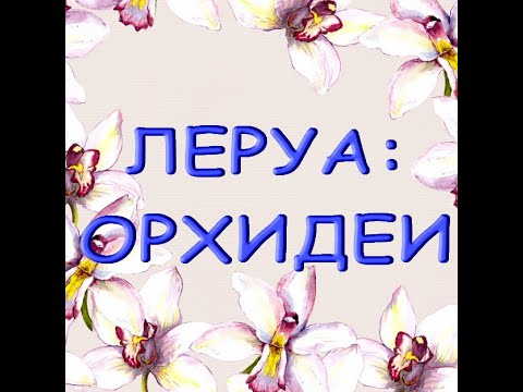 """Леруа:ЗАВОЗ прекрасных ОРХИДЕЙ,19.08.21,ТЦ """"Космопорт"""",Самара."""