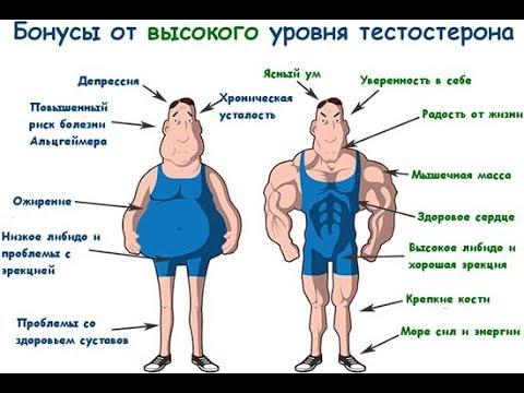 Таблетки для потенции мужчин русские