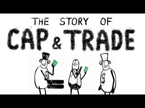 Patikimi prekybos signalai