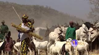 Los Peuls de África
