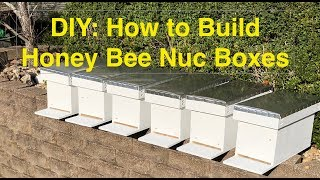 Building Nuc Boxes the EASY WAY - Using Pocket Holes