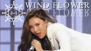 [HOT] MAMAMOO  - Wind Flower, 마마무 -  Wind Flower show Music core 20181215
