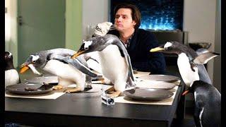 小伙养了6只南极企鹅,每天同吃同住在一起,还要帮忙孵化企鹅蛋!