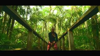 WizKid Feat. Femi Kuti   Jaiye Jaiye (Official Video)